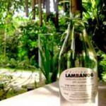 Buy Lambanog - Lambanog for Sale - Capistrano Lambanog